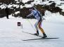Biathlon Training